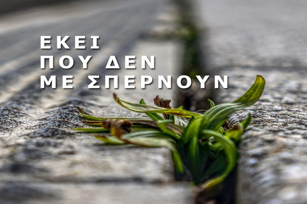 """7 + 1 ποιήματα από την 3η συλλογή του Στέφανου Παντελίδη """"Εκεί που δεν με σπέρνουν"""""""